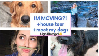 SESH / I'M MOVING?! + house tour + meet my dogs