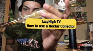 How to Use a Nectar Collector