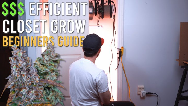 180W HALF POUND CLOSET GROW: BEGINNERS SET UP GUIDE