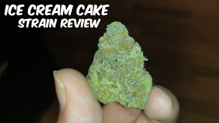 ICE CREAM CAKE Strain Review