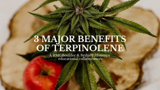 Stoner Science: Terpinolene- medicinal benefits of terps