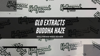 Glo Extracts Buddha Haze Cartridges Review.