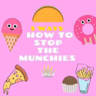 5 Ways How to Stop the Munchies
