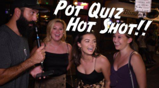 Pot Quiz Hot Shot!! // The Green Lab