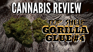 Gorilla Glue #4 - Top Shelf - Cannabis Review