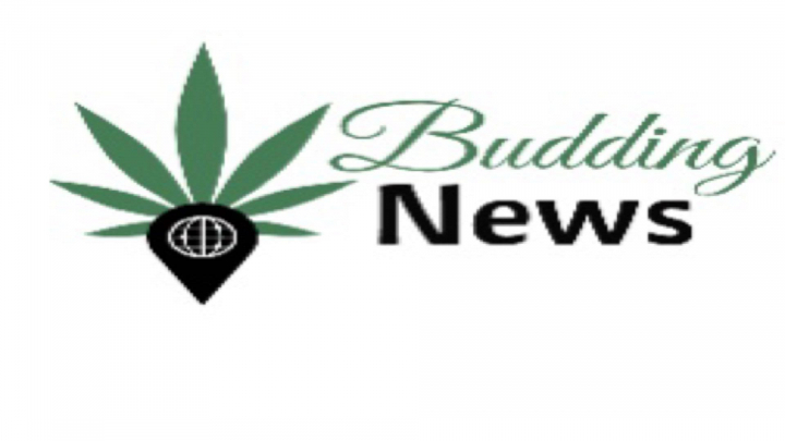 Budding News October 9