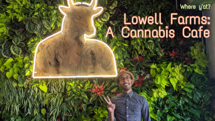 Visiting The FIRST U.S. Cannabis Cafe