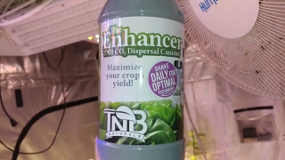 Redemption grow EP1 veg with The Enhancer natural CO2 generator from TNB Naturals
