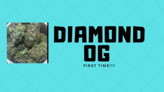 TRYING DIAMOND OG? RELIEVING MY ANXIETY!