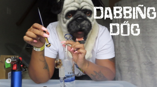 DABBING IN A DOG MASK