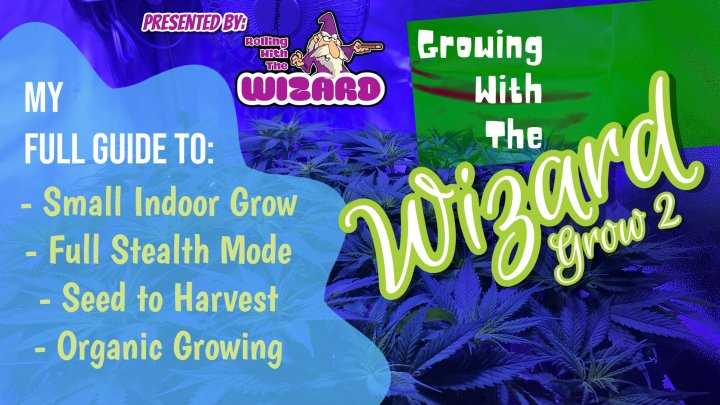 Growing With The Wizard - Grow 2 - Episode 1