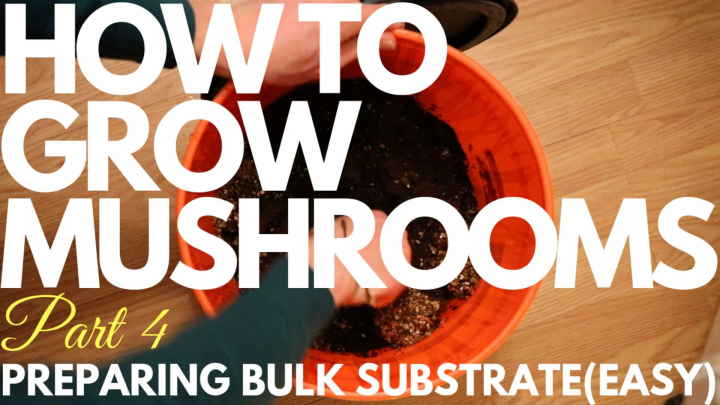 How To Prepare Bulk Substrate(Easy Method) | How To Grow Magic Mushrooms | Part 4