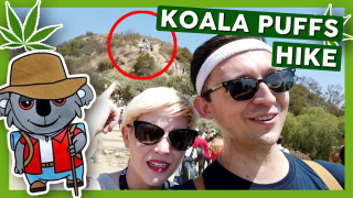 KOALA PUFFS' MEET AND HIKE