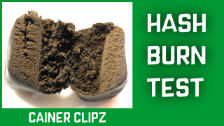HASH, SOLID, PUFF!!! Hashish Preview And CRUMBLE Test (Nepal Temple Ball, King Hassen, Kief)