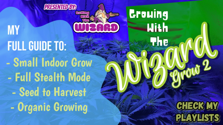 Growing With The Wizard - Grow 2 - Episode 2