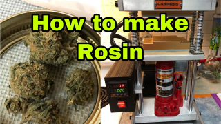 making our dabs (rosin)