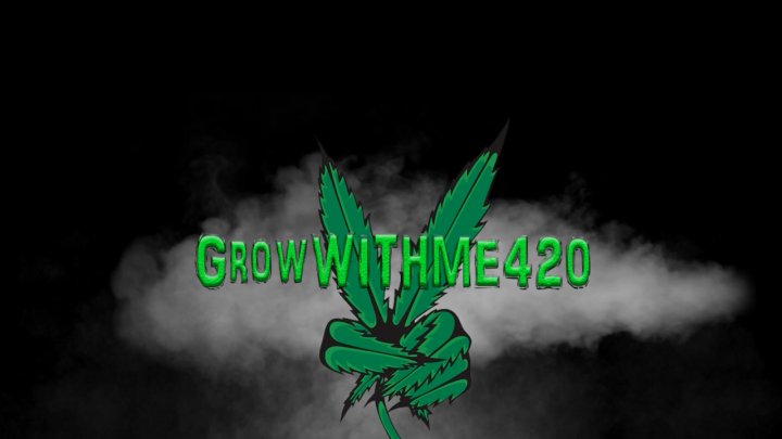 GrowWithMe 420 Week 3 Madness Canuk Puk using The Enhancer natural CO2 generator by TNB Naturals