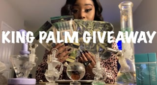 KING PALM GIVEAWAY & Q&A!