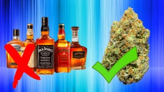 WHY CANNABIS IS SAFER THAN ALCOHOL!