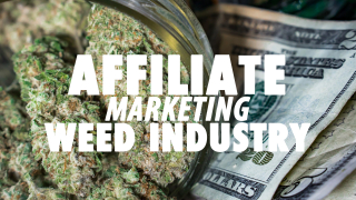 How To Make Money In The Cannabis Industry Legally! (Best Cannabis Niche Affiliate Program)