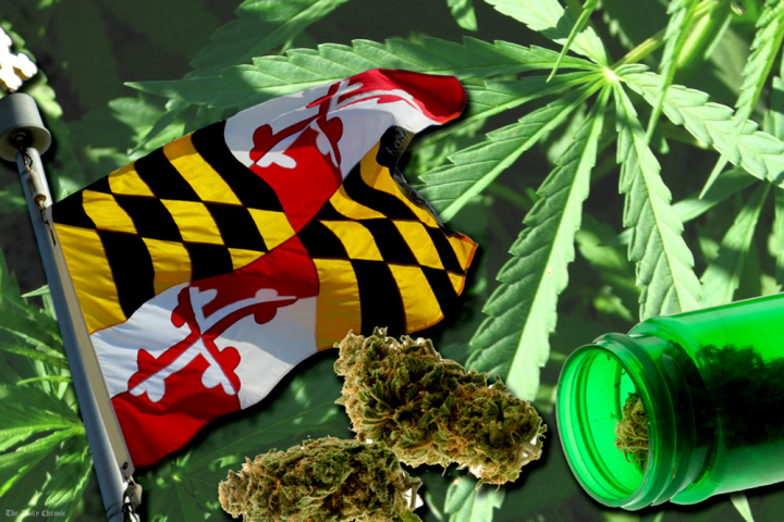 Saving Money as a Maryland Medical Cannabis Patient