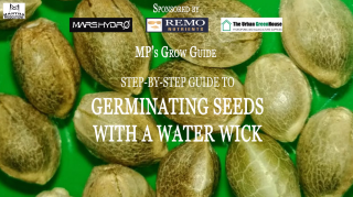 MP's Grow Guide- Germinating Seeds with a Water Wick (Sponsored by Mars Hydro, Remo Nutrients & Urban Greenhouse)