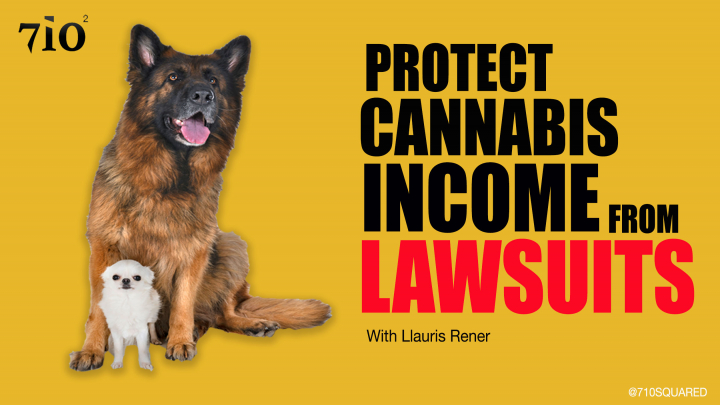 EP14 Clip : How to protect your cannabis income from lawsuits.
