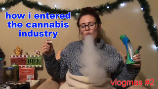 vlogmas day 2 // my career in the cannabis industry