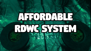 The Inside Hydro RDWC System / Recirculating Deep Water Culture