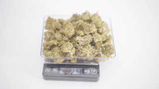 CBD Weed Prices | How much should you pay for an Ounce of CBD weed ?