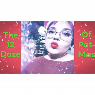 The 12 Daze of Potmas- TostedBiscuits