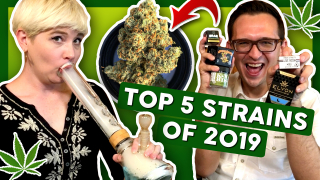 TOP 5 Favorite STRAINS of 2019
