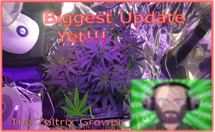 Biggest Garden Update Yet! | Look at NEW Light AND Grow Area! | Veg On