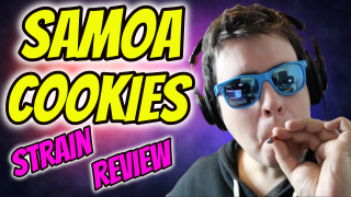 SAMOA COOKIES STRAIN REVIEW!