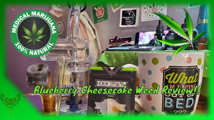 Blueberry Cheesecake Weed Review From  @VenomExtracts and @TheNirvanaCenter