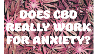 Does CBD Work For Anxiety? A Conversation Before Beginning a CBD Journey