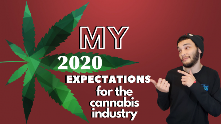 Predictions For 2020 in the Cannabis Industry