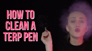 How to Clean A Terp Pen