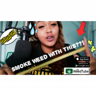 ASIAN SMOKE WEED WITH WHAT?|HOW&WHY?