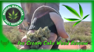 Ice Cream Cake Weed Review Strain Review from @WhiteMountainDispensary