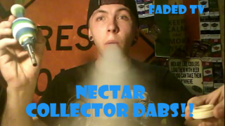 Nectar Collector Dabs!! ~ FADED TV