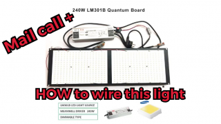 Ecofarm 240 watt LM301B quantum board with dimmer mail call and how to wire it
