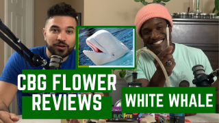 CBG Flower Review: 'White Whale' by VESL