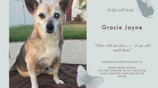 We Say Goodbye To Gracie Jayne