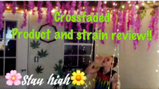 CROSSFADED in THE ENCHANTED FOREST