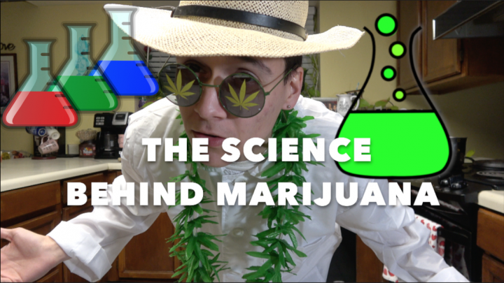THE SCIENCE BEHIND MARIJUANA