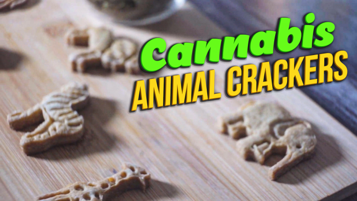 How to make Cannabis Infused Animal Crackers