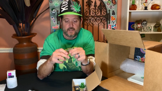 Unboxing Jan 2020 The Glass Gang OG Box - One of a kind subscription box for glass