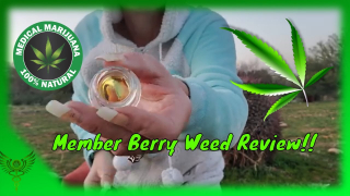 Member Berry Weed Review from @Moxie Extracts #Freemycure
