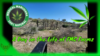 A day on the Farm Vlog 4!!  #FMCFarmz #FreeMyCure
